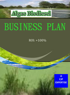 Biodiesel Business Plan: Developing an Action Plan